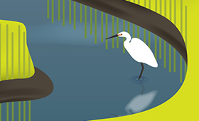 Coastal Ecosystem banner